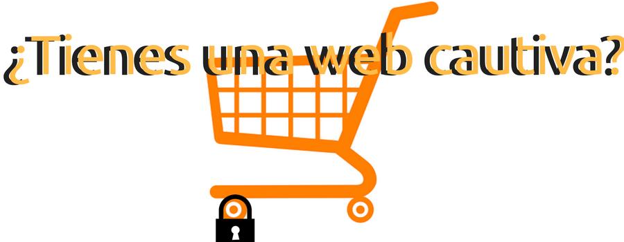 Los riesgos de no tener una web propia al 100%