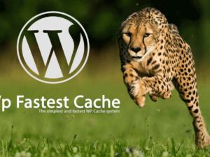 Problema wp-content/cache/all/index.html con WP fastest cache