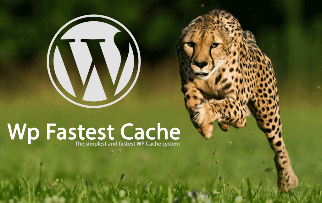 Problema wp-content/cache/all/index.html con WP fastest cache